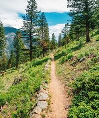 DEB_trails.jpg