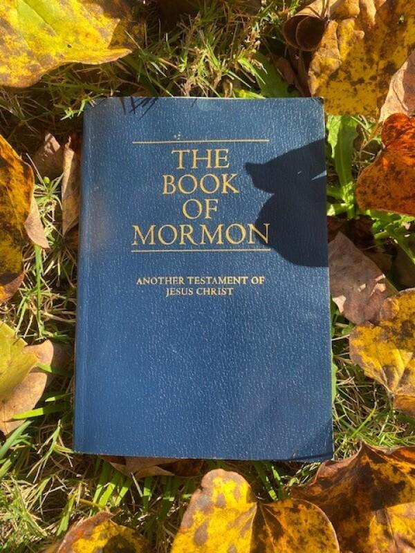 Blue Book of Mormon