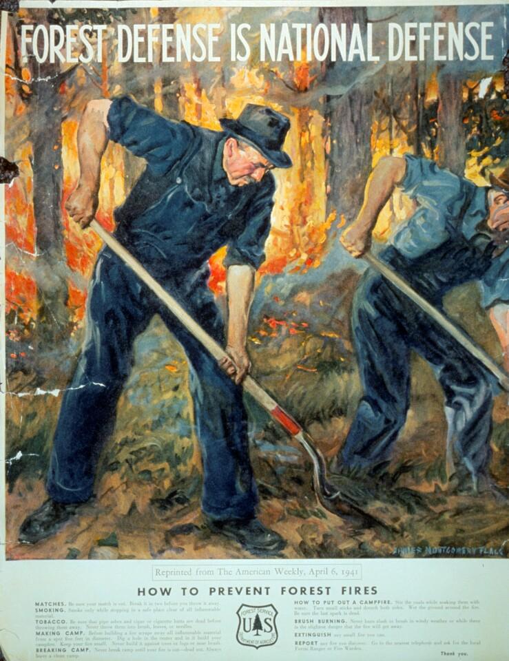1941forestdefence.jpg