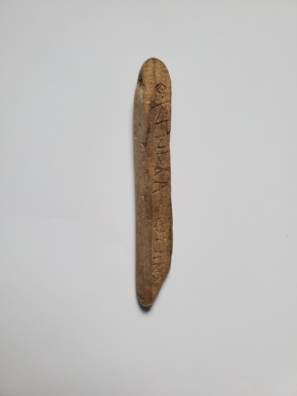 Piece of Driftwood